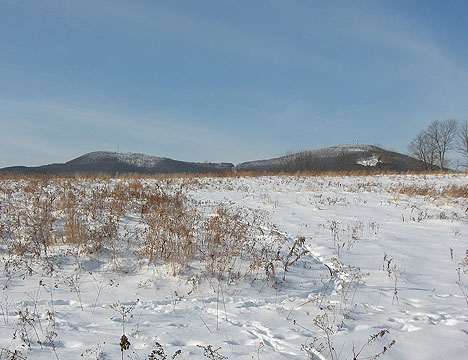 elk_hill_winter