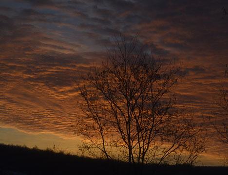 march_dusk