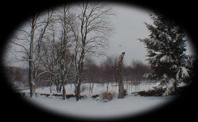 19990322