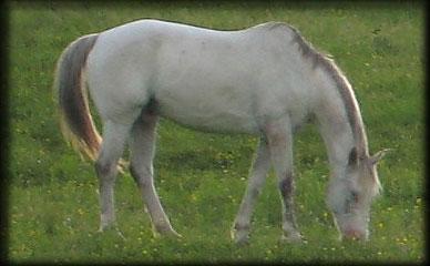 20070615